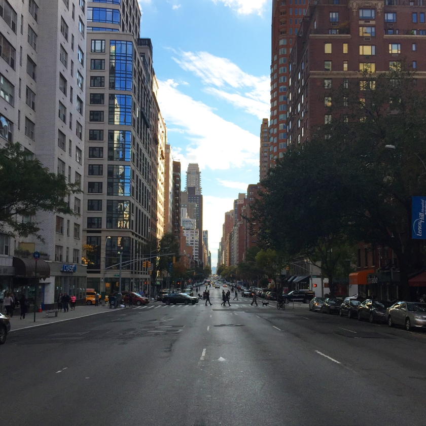 Full Time Explorer How to Spend a Day on the Upper East Side for under 30 dollars budget ues nyc new york city avenue street