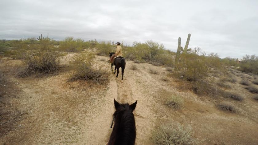 Things to do see in Phoenix Arizona Macdonalds Ranch Horseback Riding Tour Smokey Joe Horses Desert Full Time Explorer